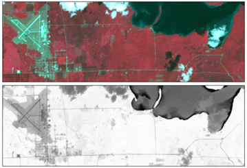 Color infrared and NDVI images of Pellston, MI.